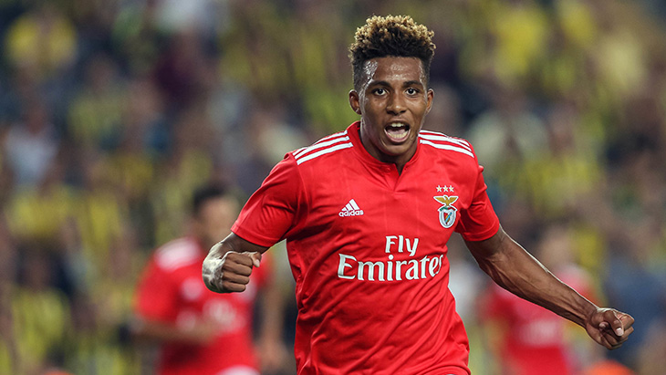 gedson-fernandes-benfica-joie-icon