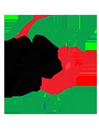 Logo de l'équipe : Algérie