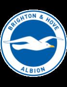 Logo de l'équipe : Brighton & Hove Albion FC