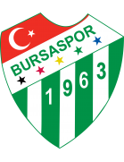 Logo de l'équipe : Bursaspor