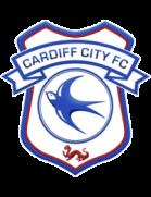 Logo de l'équipe : Cardiff City