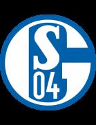 Logo de l'équipe : FC Schalke 04